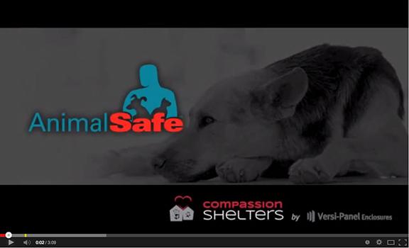 Animal-Safe-video