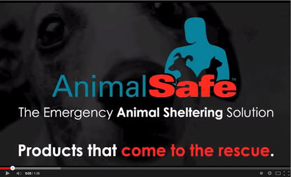 AnimalSafe-Video